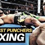 The HARDEST PUNCHERS in Boxing (2019)