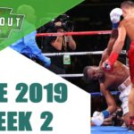 Boxing Knockouts | June 2019 Week 2