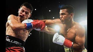 Roman Gonzalez vs McWilliams Arroyo – Highlights (Great FIGHT)