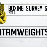 Bantamweights – Boxing Survey Series Part 2