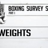 Flyweights – Boxing Survey Series Part 1