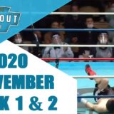 Boxing Knockouts | November 2020 Week 1 & 2